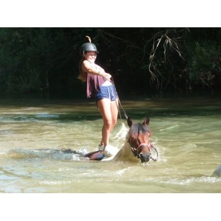 Colonie de vacances à cheval ou à poney