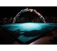 Stage ado d'acrobatie // Du 19 au 20 février