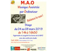Stage de MAO