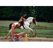 Équitation et sports mécaniques  au Haras de Val en Pré/ 5 jours