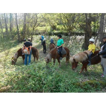 vacances a la ferme , stage poney